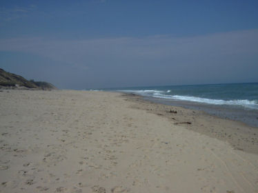 Looking North On Lecount Hollow Beach
