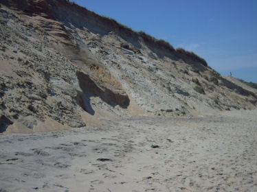 Foot of Lecount Hollow Beach Dunes